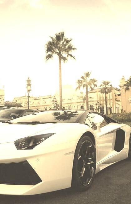 Lavish, Billionaire, Castle, Fancy, Palm Tree